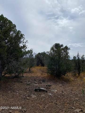 2967 W Plate Road #152, Williams, AZ 86046 (MLS #187526) :: Keller Williams Arizona Living Realty