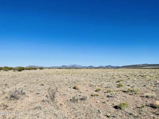 8432 S Big Bear Road #462, Williams, AZ 86046 (MLS #187669) :: Flagstaff Real Estate Professionals