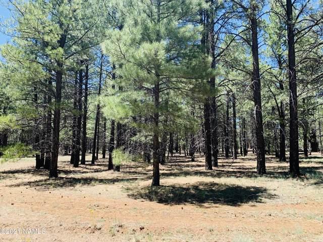 17440 Forest Service 146W Road, Flagstaff, AZ 86018 (MLS #187692) :: Keller Williams Arizona Living Realty