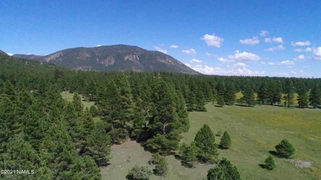 Tbd W Mt Elden Lookout Road, Flagstaff, AZ 86001 (MLS #187716) :: Keller Williams Arizona Living Realty
