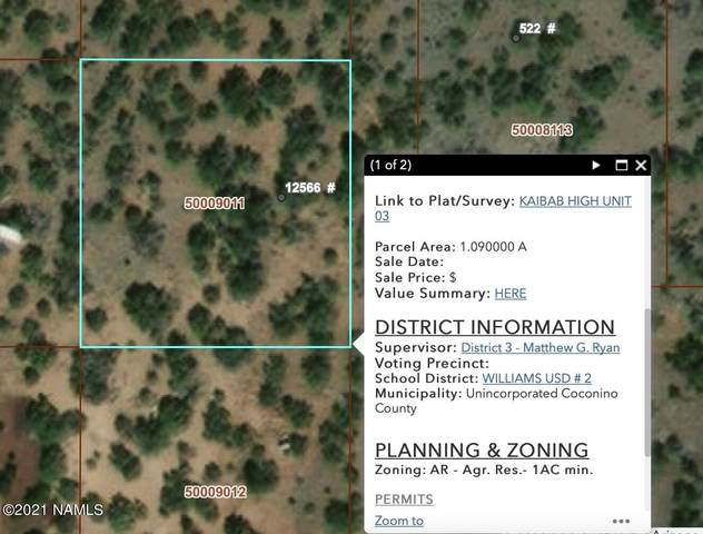 12566 Kendall Aspen Way #293, Williams, AZ 86046 (MLS #187726) :: Flagstaff Real Estate Professionals