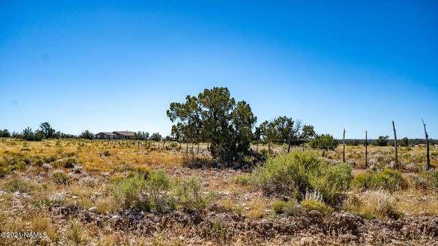 11499 W Bright Sky Trail #1053, Williams, AZ 86046 (MLS #187727) :: Keller Williams Arizona Living Realty