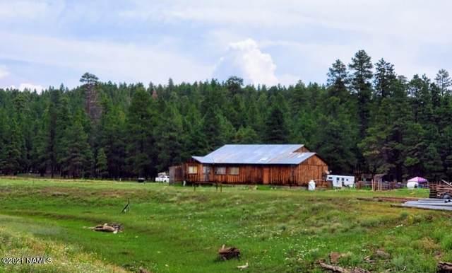 12405 Forest Service 772 Road, Flagstaff, AZ 86005 (MLS #187731) :: Keller Williams Arizona Living Realty
