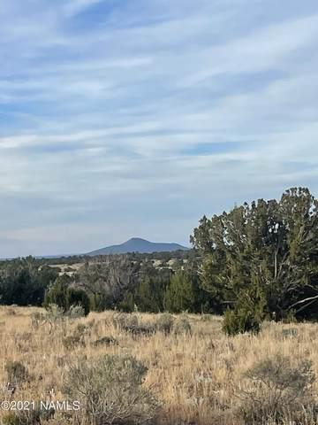 3867 Laurence Drive #105, Williams, AZ 86046 (MLS #187739) :: Keller Williams Arizona Living Realty
