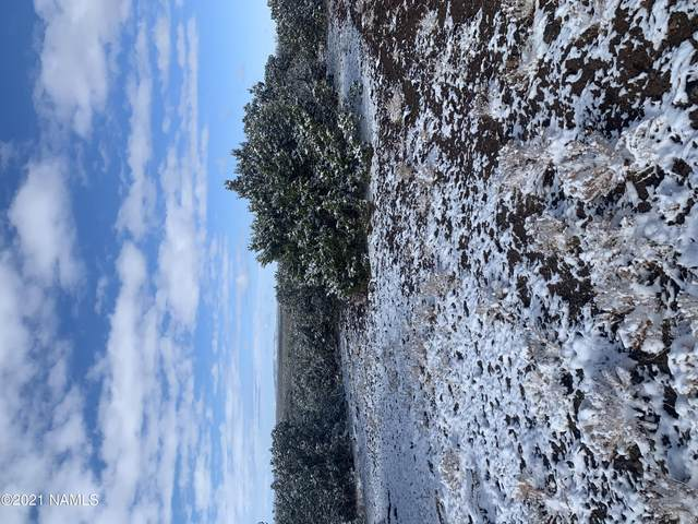 11568 S Blackbird Way #445, Williams, AZ 86046 (MLS #187745) :: Keller Williams Arizona Living Realty