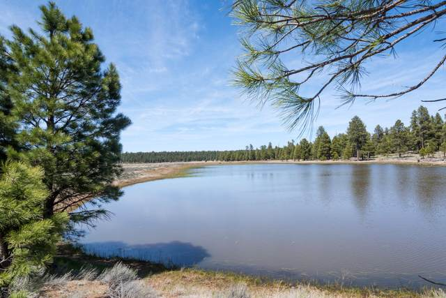 00 Forest Service 140 Road, Williams, AZ 86046 (MLS #174458) :: Maison DeBlanc Real Estate