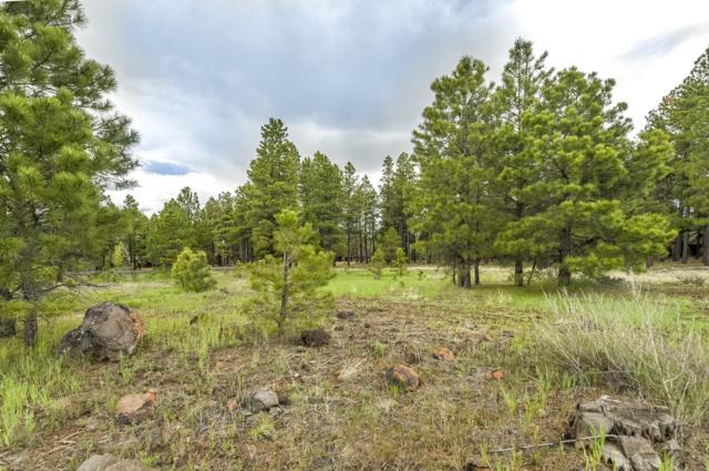 2691 Andrew Douglass, Flagstaff, AZ 86005 (MLS #176319) :: Flagstaff Real Estate Professionals