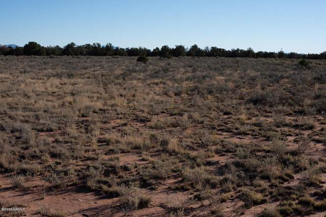 238 E Coronado Drive, Valle, AZ 86046 (MLS #179320) :: Keller Williams Arizona Living Realty
