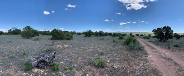 625 N Laguna Drive, Valle, AZ 86046 (MLS #179560) :: Keller Williams Arizona Living Realty