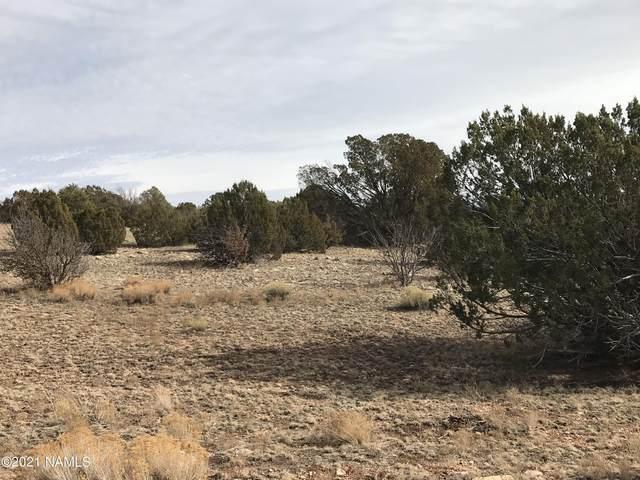3917 W Redwood Lane, Williams, AZ 86046 (MLS #180272) :: Flagstaff Real Estate Professionals