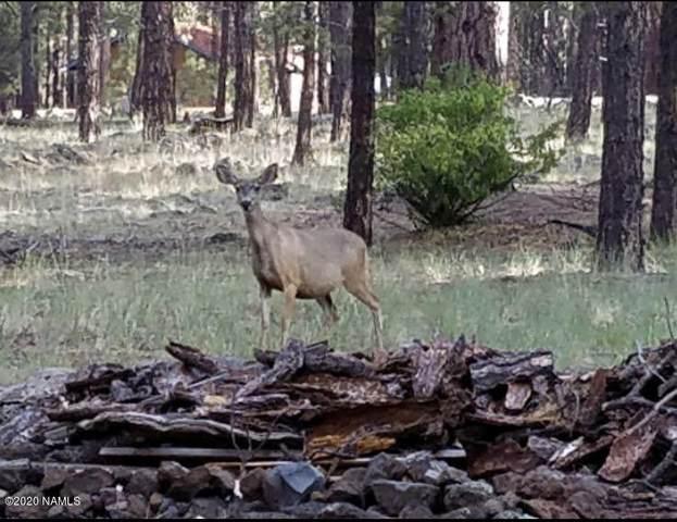 7454 E Robin Hood Road, Williams, AZ 86046 (MLS #181992) :: Keller Williams Arizona Living Realty