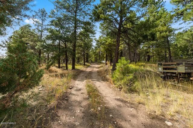 4601 Lake Mary Road, Flagstaff, AZ 86001 (MLS #183118) :: Keller Williams Arizona Living Realty