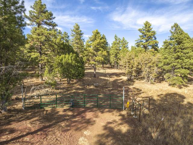 623 N Double A Ranch Road, Williams, AZ 86046 (MLS #183644) :: Flagstaff Real Estate Professionals