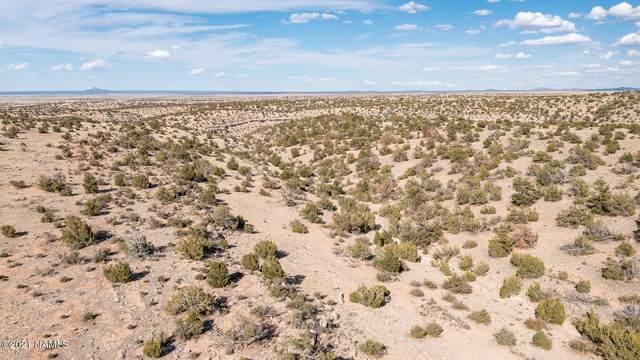 3614 S Red Butte Trl, Williams, AZ 86046 (MLS #184436) :: Keller Williams Arizona Living Realty