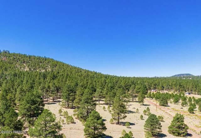 970 S Appaloosa Trail, Williams, AZ 86046 (MLS #184921) :: Flagstaff Real Estate Professionals