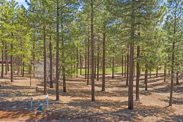 4160 S Lariat Loop #84, Flagstaff, AZ 86005 (MLS #185077) :: Keller Williams Arizona Living Realty