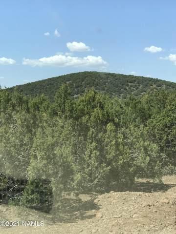 Lot 268 Olivas Alone, Ash Fork, AZ 86320 (MLS #185723) :: Flagstaff Real Estate Professionals