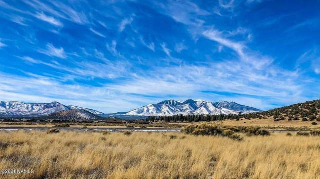 8805 Richfield Drive #101, Flagstaff, AZ 86004 (MLS #185787) :: Keller Williams Arizona Living Realty