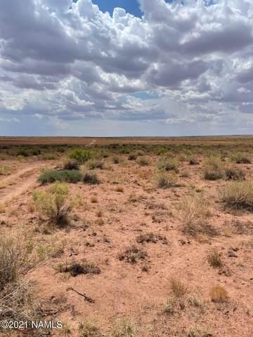 40 Acres E Tract 427 Painted Desert Ranch E, Holbrook, AZ 86025 (MLS #186604) :: Keller Williams Arizona Living Realty