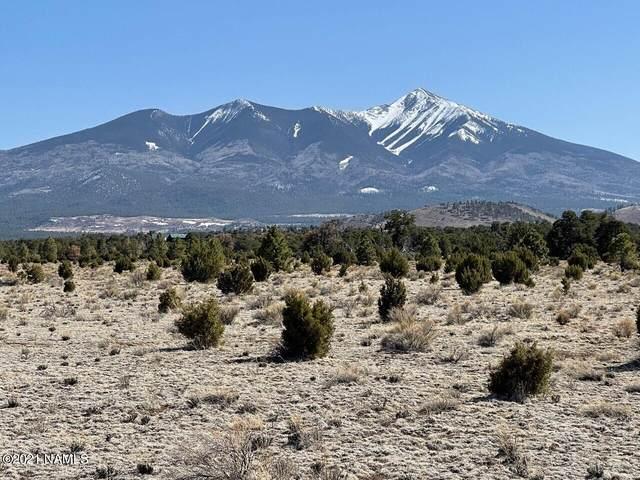 1043 Forest Service 9129A Road, Flagstaff, AZ 86001 (MLS #187178) :: Flagstaff Real Estate Professionals