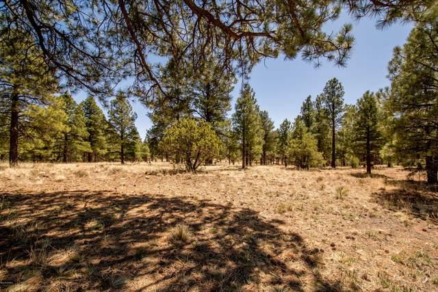 83 N Lake Hills Drive Drive, Flagstaff, AZ 86004 (MLS #172305) :: Keller Williams Arizona Living Realty