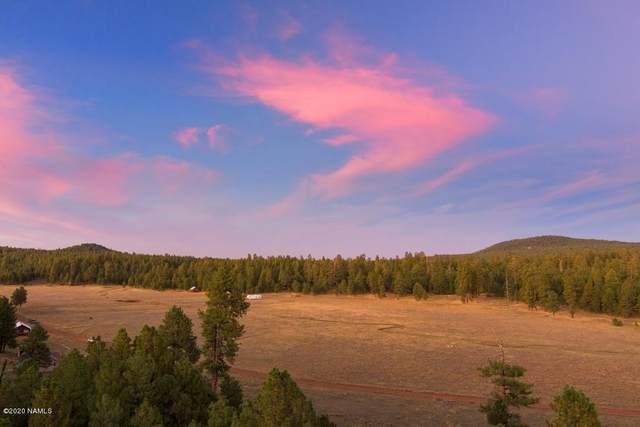 3137 Forest Service 91C Road, Mormon Lake, AZ 86038 (MLS #182927) :: Keller Williams Arizona Living Realty