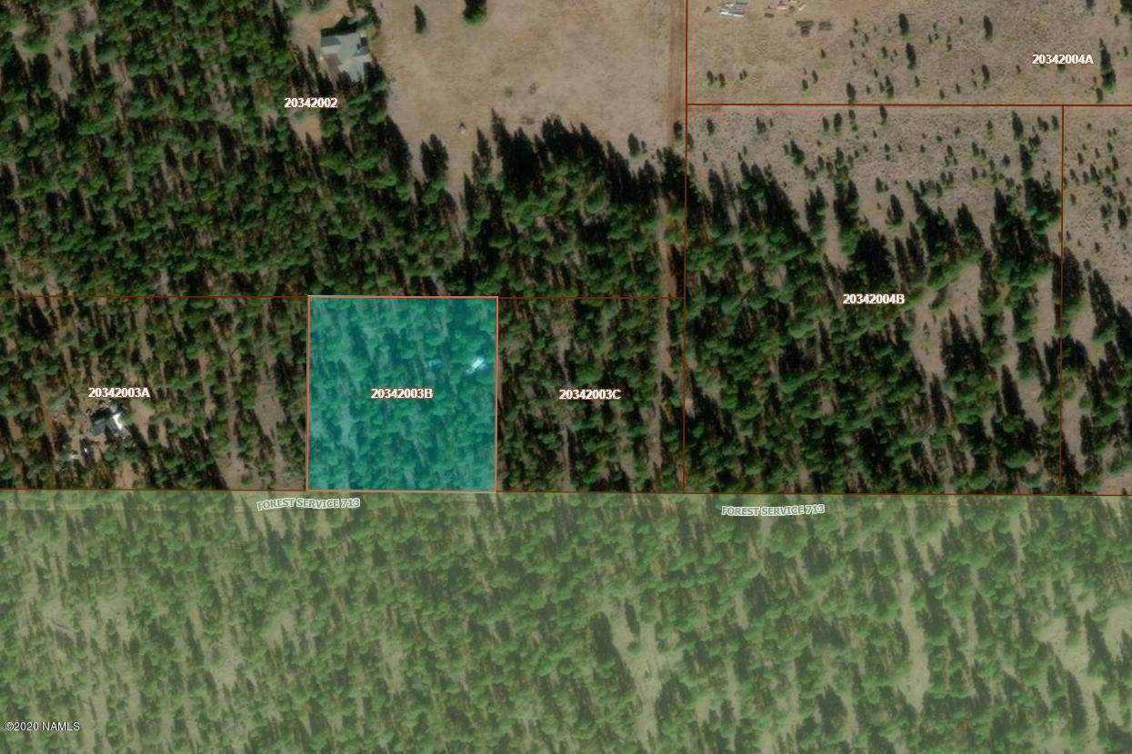 9649 E Forest Service Rd 713 - Photo 1