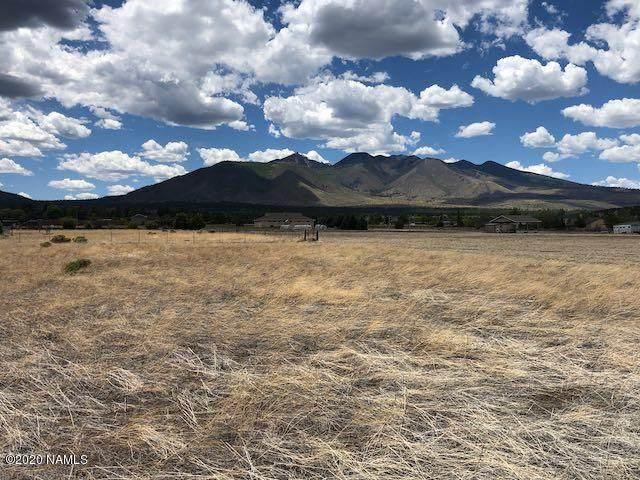 10551 N Swede Drive, Flagstaff, AZ 86004 (MLS #181740) :: Flagstaff Real Estate Professionals