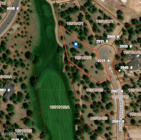 2931 S Solitaires Canyon Dr, Flagstaff, AZ 86005 (MLS #184278) :: Keller Williams Arizona Living Realty