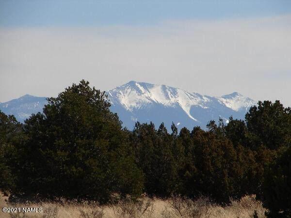2095 E Pine Road #403, Williams, AZ 86046 (MLS #185287) :: Keller Williams Arizona Living Realty