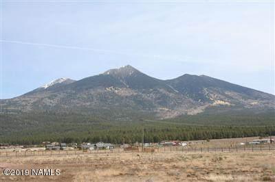 4587 Laskin Trail - Photo 1