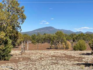 7571 Tulip Trail, Williams, AZ 86046 (MLS #185752) :: Flagstaff Real Estate Professionals