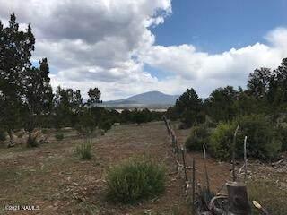 6574 N Mantenga La Fe, Williams, AZ 86046 (MLS #185778) :: Keller Williams Arizona Living Realty
