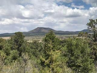 6574 Mantenga La Fe Western 12 Ac - Photo 1