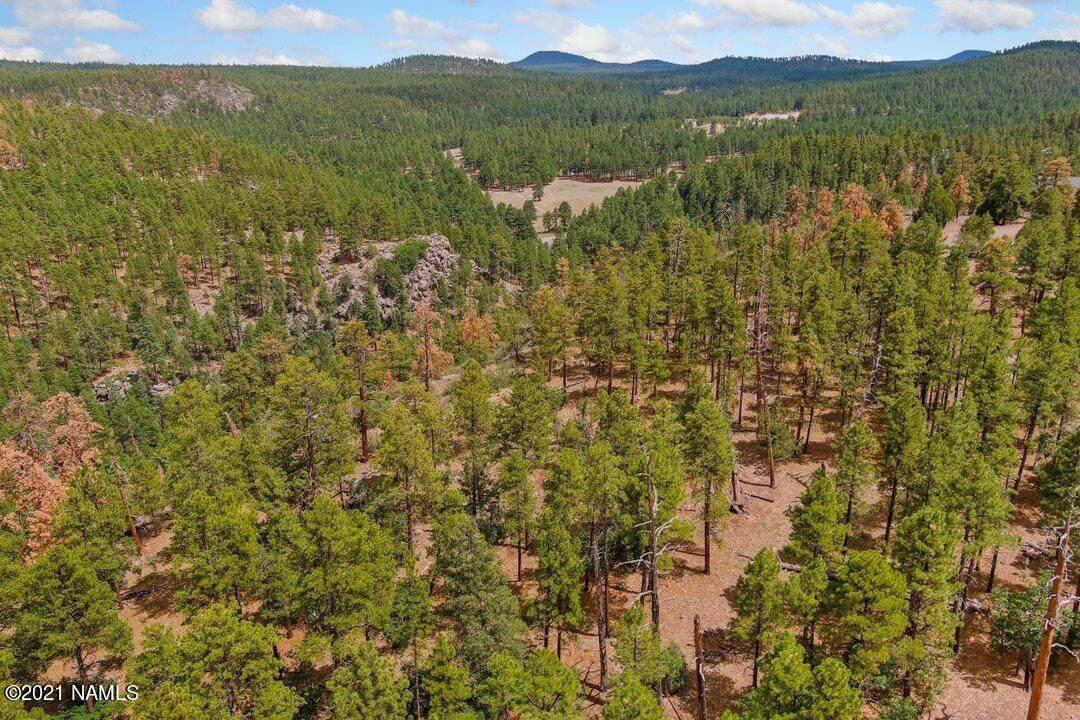1628 Canyon View Loop - Photo 1