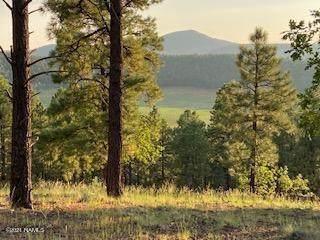 4140 S Big Sky Road #200, Flagstaff, AZ 86005 (MLS #187533) :: Keller Williams Arizona Living Realty