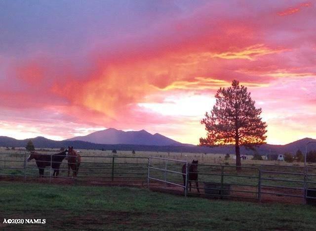 2797 S Peaks View Drive, Parks, AZ 86018 (MLS #180736) :: Keller Williams Arizona Living Realty