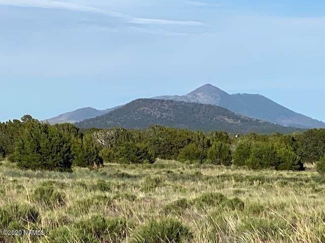 8131 Buena Vista Trail - Photo 1