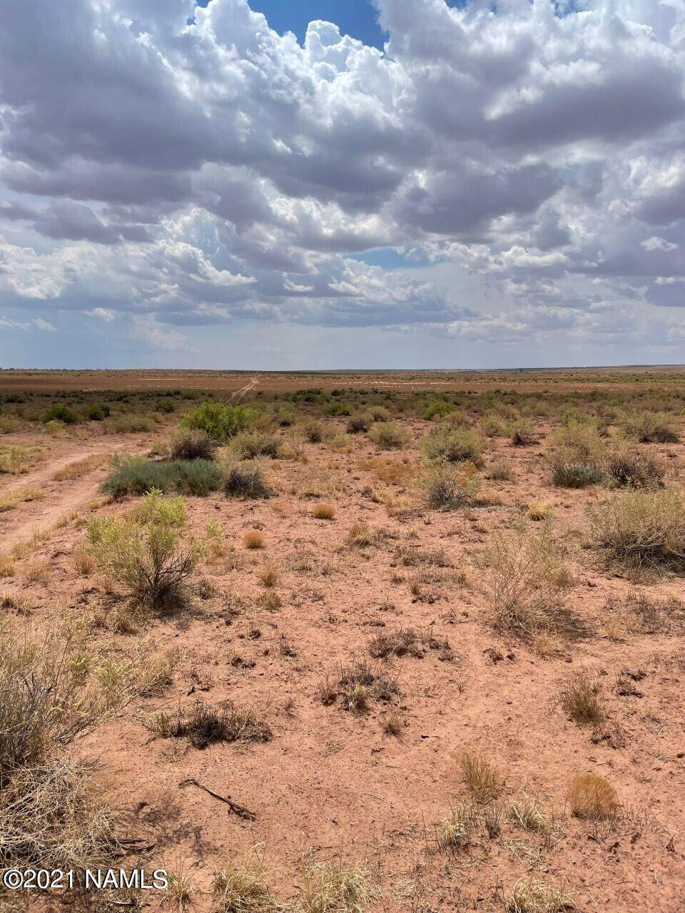40 Acres Tract 427 Painted Desert Ranch - Photo 1