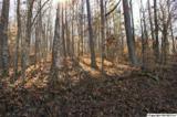 31 Hickory Hill - Photo 1