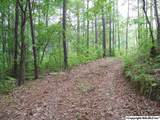 26 Trail Path Road - Photo 9