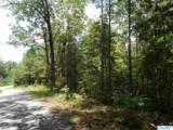 60 County Road 135 - Photo 6