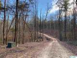 Lot 4 Burns Bluff Loop - Photo 41