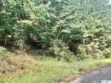 000 Nola Trail - Photo 1