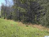 0 Old Railroad Bed Road - Photo 5