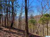 81 Blowing Cave Road - Photo 8