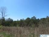 0 County Road 92 - Photo 17