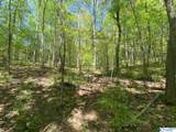 11685 Glass Hollow Road - Photo 11