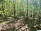 11685 Glass Hollow Road - Photo 13
