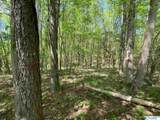 11685 Glass Hollow Road - Photo 14